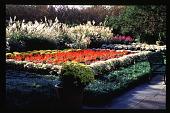 view [Dallas Arboretum and Botanical Garden]: garden furniture. digital asset: [Dallas Arboretum and Botanical Garden]: garden furniture.: 1996 Oct. 1.