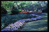 view [Dallas Arboretum and Botanical Garden]: Lay ornamental garden. digital asset: [Dallas Arboretum and Botanical Garden]: Lay ornamental garden.: 1996 May.
