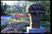 view [Dallas Arboretum and Botanical Garden]: spring tulips. digital asset: [Dallas Arboretum and Botanical Garden]: spring tulips.: 1996 May.