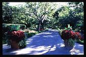 view [Dallas Arboretum and Botanical Garden]: garden furniture. digital asset: [Dallas Arboretum and Botanical Garden]: garden furniture.: 1996 Jul.