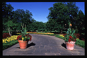 view [Dallas Arboretum and Botanical Garden]: summer and potted plants. digital asset: [Dallas Arboretum and Botanical Garden]: summer and potted plants.: 1996 Jul.