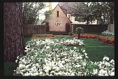 view [Dogwoods]: facing north, looking from the terrace to the clock garden with azalea-planted parterres. digital asset: [Dogwoods]: facing north, looking from the terrace to the clock garden with azalea-planted parterres.: 1980.