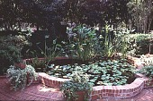 view [Ravenwood]: a lily pond. digital asset: [Ravenwood]: a lily pond.: 1999 Aug.