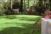 view [Rienzi]: landscaped lawn area, looking to wall and gate leading down to bayou. digital asset: [Rienzi]: landscaped lawn area, looking to wall and gate leading down to bayou.: 1985.
