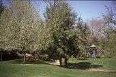 view [Harlan Crow Garden]: children's play yard. digital asset: [Harlan Crow Garden]: children's play yard.: 2006 Mar.