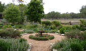 view [Diamond G. J. Ranch]: the old-fashioned garden is edged with rocks. digital asset: [Diamond G. J. Ranch]: the old-fashioned garden is edged with rocks.: 2011 Apr.