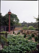 view [David-Peese Garden]: birdhouse and garden. digital asset: [David-Peese Garden] [transparency]: birdhouse and garden.