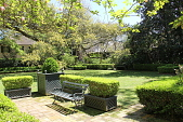 view [Birdwell Garden]: trimmed boxwood borders and in plant containers surround the St. Augustine lawn. digital asset: [Birdwell Garden]: trimmed boxwood borders and in plant containers surround the St. Augustine lawn.: 2015 Mar.