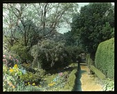 view [Shirley Plantation]: walkway and flower beds. digital asset: [Shirley Plantation]: walkway and flower beds.: [between 1914 and 1949?]