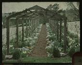 view Western View digital asset: Western View: 04/21/1931