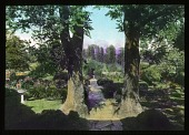 view [Welbourne]: a view of the gardens. digital asset: [Welbourne]: a view of the gardens.: [between 1914 and 1949?]