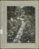 view Barrett Garden digital asset: Barrett Garden [photoprint]