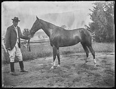 view [Miscellaneous Images in Virginia]: man and horse at an unidentified location. digital asset: [Miscellaneous Images in Virginia] [glass negative]: man and horse at an unidentified location.