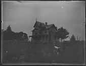 view [Pelham]: house with cow and pasture in foreground. digital asset: [Pelham] [glass negative]: house with cow and pasture in foreground.