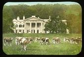 view [Morven Park] digital asset: [Morven Park]: [between 1914 and 1949?]