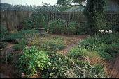 view [Hodgson-Stiffler House]: vegetable and cutting garden. digital asset: [Hodgson-Stiffler House]: vegetable and cutting garden.: 2000 Sep.