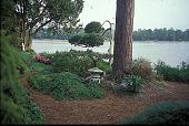 view [Hodgson-Stiffler House]: Japanese topiary with lantern and birdhouses. digital asset: [Hodgson-Stiffler House]: Japanese topiary with lantern and birdhouses.: 2000 Sep.
