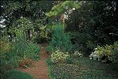 view [Hodgson-Stiffler House]: the Hidden Garden. digital asset: [Hodgson-Stiffler House]: the Hidden Garden.: 2000 Sep.