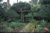 view [Hodgson-Stiffler House]: the pergola garden. digital asset: [Hodgson-Stiffler House]: the pergola garden.: 2000 Sep.