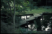 view [Bassett House at Montpelier]: pond with wooden bridge. digital asset: [Bassett House at Montpelier]: pond with wooden bridge.: 2000 Aug.