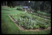 view [Willow Oaks]: a terraced herb and vegetable garden with low stone walls. digital asset: [Willow Oaks]: a terraced herb and vegetable garden with low stone walls.: 1987 Jul.