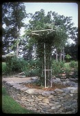 view [Willow Oaks]: trellises with climbing plants add another dimension to the rose garden. digital asset: [Willow Oaks]: trellises with climbing plants add another dimension to the rose garden.: 1987 Jul.