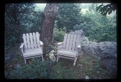 view [Willow Oaks]: a place to sit surrounded by nature digital asset: [Willow Oaks]: a place to sit surrounded by nature: 1987 Jul.