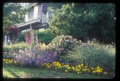 view [Meg and Bill Campbell Garden]: flower beds on the northwest property corner. digital asset: [Meg and Bill Campbell Garden]: flower beds on the northwest property corner.: 2009 May.