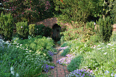 view [Robin Hill]: A lush display of flowers, flowering shrubs, and trees in the flamingo garden. digital asset: [Robin Hill]: A lush display of flowers, flowering shrubs, and trees in the flamingo garden.: 2012 Aug.