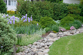 view [The Frierson Garden]: The dry stream bed of rocks prevents flooding of the patio at a lower elevation. digital asset: [The Frierson Garden]: The dry stream bed of rocks prevents flooding of the patio at a lower elevation.