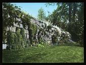 view [Eddy Garden] digital asset: [Eddy Garden]: [between 1914 and 1949?]