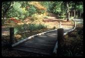 view [Miller Garden]: view of bridge path, pergola and woodland gardens. digital asset: [Miller Garden]: view of bridge path, pergola and woodland gardens.: ca. 1987.
