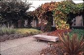 view [Hofius Garden, Sequim, Washington]: the main entrance of the house. digital asset: [Hofius Garden, Sequim, Washington]: the main entrance of the house.: 1998 Oct.