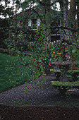view [Helene Schoen Garden]: the west side of the garden next to the house. digital asset: [Helene Schoen Garden]: the west side of the garden next to the house.: 1998 May.