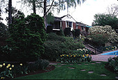 view [Helene Schoen Garden]: the house's southern exposure, with a magnolia over the pool. digital asset: [Helene Schoen Garden]: the house's southern exposure, with a magnolia over the pool.: 1998 May.
