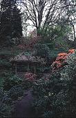 view [Helene Schoen Garden]: gazebo with Pieris japonica on right. digital asset: [Helene Schoen Garden]: gazebo with Pieris japonica on right.: 1998 May.