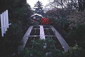 view [Helene Schoen Garden]: the rose garden in winter with the greenhouse behind. digital asset: [Helene Schoen Garden]: the rose garden in winter with the greenhouse behind.: 1998 May.