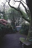 view [Helene Schoen Garden]: the lowest oak in the garden and a bench. digital asset: [Helene Schoen Garden]: the lowest oak in the garden and a bench.: 1998 May.