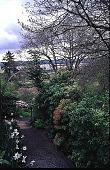 view [Helene Schoen Garden]: a trellis with Oregon grape and a view of the Columbia River in the background. digital asset: [Helene Schoen Garden]: a trellis with Oregon grape and a view of the Columbia River in the background.: 1998 May.