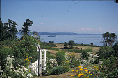 view [Topsfield]: looking south at Puget Sound and a ferry boat. digital asset: [Topsfield]: looking south at Puget Sound and a ferry boat.: 2001 Jul.