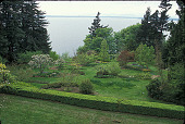 view [Halewood]: looking west toward Puget Sound showing the layout of orchard and wild flower beds. digital asset: [Halewood]: looking west toward Puget Sound showing the layout of orchard and wild flower beds.: 2001 May.