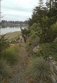 view [Hillside Gardens]: gravel walkway to beach next to rock face and evergreens. digital asset: [Hillside Gardens]: gravel walkway to beach next to rock face and evergreens.: 2004 Oct.
