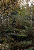 view [Welch Sanctuary]: a Japanese lantern was set in the woodlands garden; rocks were left in the woods to be aged by moss. digital asset: [Welch Sanctuary] [slide]: a Japanese lantern was set in the woodlands garden; rocks were left in the woods to be aged by moss.