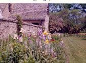 view [Harmandie]: iris bed next to stone wall. digital asset: [Harmandie]: iris bed next to stone wall.: 1959 Jun.
