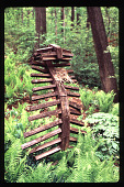 view [Christopher Place]: wood sculpture in ferns, in summer. digital asset: [Christopher Place]: wood sculpture in ferns, in summer.: 1997 May.