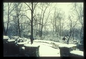 view [Thomas Garden]: view from the house toward the perennial gardens in winter. digital asset: [Thomas Garden]: view from the house toward the perennial gardens in winter.: [between 1990 and 1999]