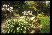 view [Thomas Garden]: the northeast terrace of the house, looking northeast. digital asset: [Thomas Garden]: the northeast terrace of the house, looking northeast.: [between 1990 and 1999]