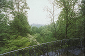 view [Chafton Place]: wrought iron rail overlooks portion of a 32 acre woodland area. digital asset: [Chafton Place]: wrought iron rail overlooks portion of a 32 acre woodland area.: 2002 Jun.