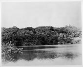 view Barro Colorado Island, Panama digital asset number 1