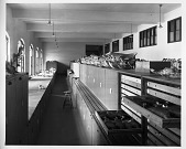 view Storage Area, Division of Mammals, U.S. National Museum digital asset number 1